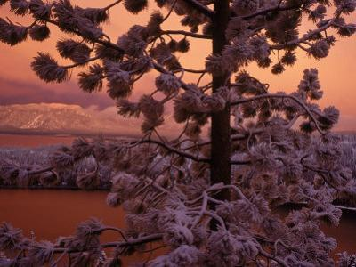 Lake Tahoe at Sunset with Snow, California