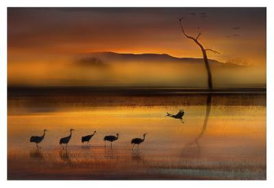 We Are Here Waiting For You-Shenshen Dou-Giclee Print
