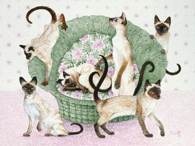 We are Siamese If You Please-Pat Scott-Giclee Print