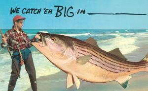 We catch 'em big in --
