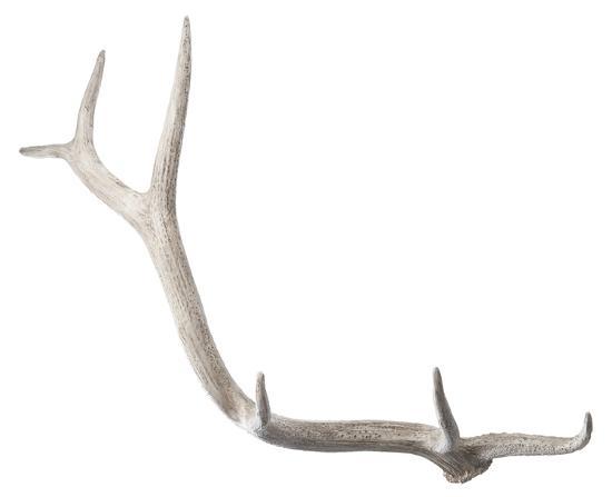 Weathered Resin Elk Antler--Home Accessories