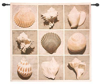 Weathered Shell Sample--Wall Tapestry