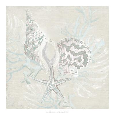 Weathered Shell Sketch II-June Erica Vess-Giclee Print