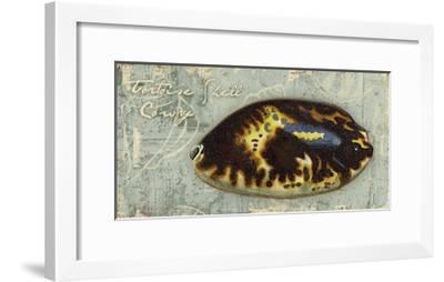 Weathered Shells XI 2-Up-Kate Ward Thacker-Framed Art Print