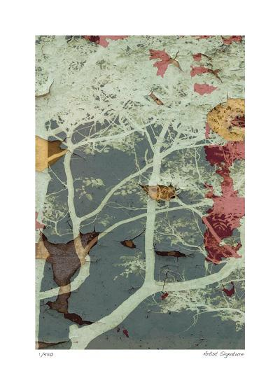 Weathered Trees in Blue 2-Mj Lew-Giclee Print