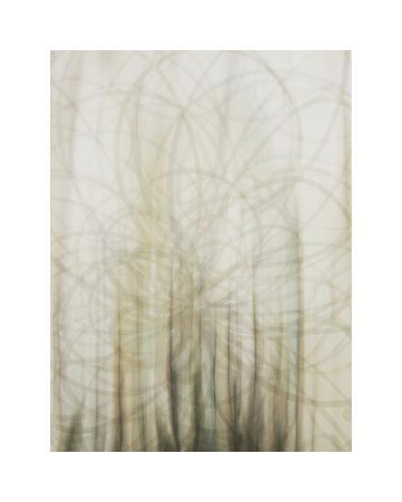 Web-Candice Alford-Giclee Print