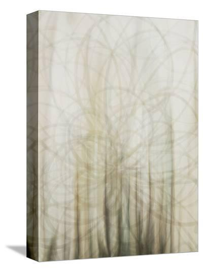 Web-Candice Alford-Stretched Canvas Print