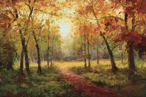 A Beautiful Walk in the Fall by Weber