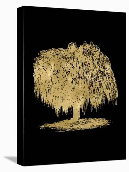 Weeping Willow Tree Golden Black-Amy Brinkman-Stretched Canvas Print