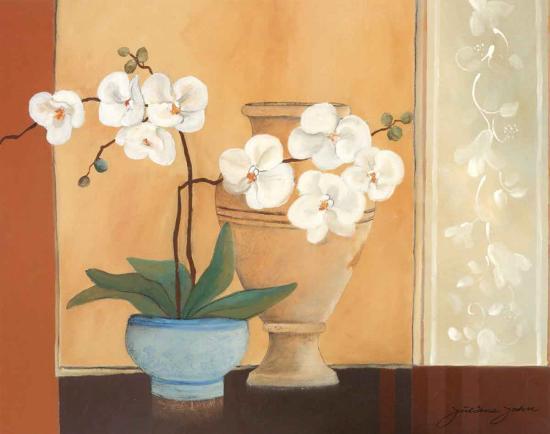 Weibe Orchideen II-Juliane Jahn-Art Print