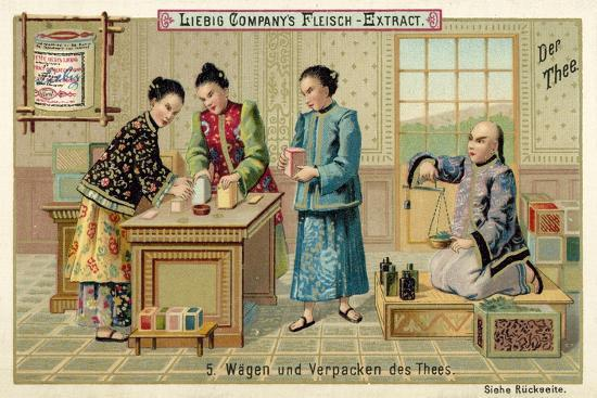 Weighing and Packing Tea--Giclee Print