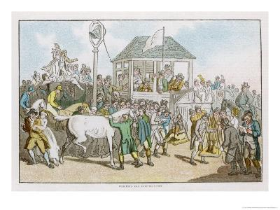 Weighing the Jockeys and Rubbing Down the Horses Before a Race-Thomas Rowlandson-Giclee Print