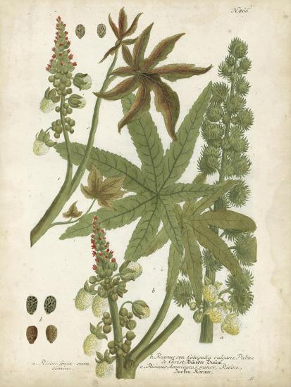 Weinmann Tropical Plants I-Johann Weinmann-Art Print
