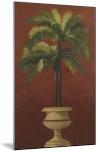 Potted Palm Red III by Welby