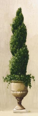 Spiral Topiary