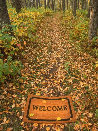 Welcome Mat on Forest Trail-Kevin Law-Photographic Print