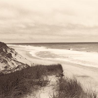 Wellfleet Dune-Christine Triebert-Photographic Print