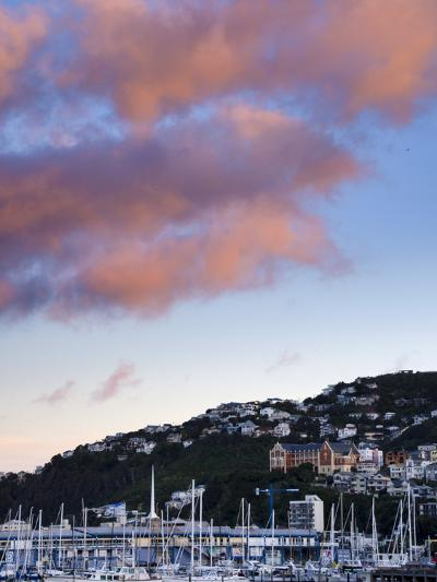 Wellington, North Island, New Zealand, Pacific-Michael Snell-Photographic Print