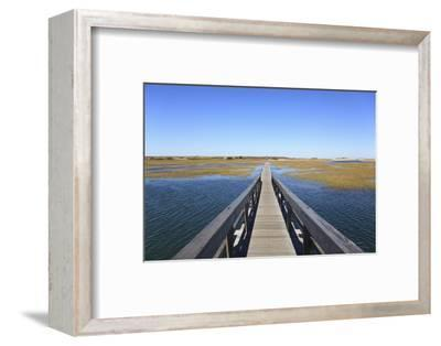 Boardwalk, Salt Marsh, Sandwich, Cape Cod, Massachusetts, New England, Usa