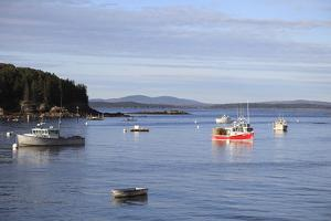 Fishing Boats by Wendy Connett