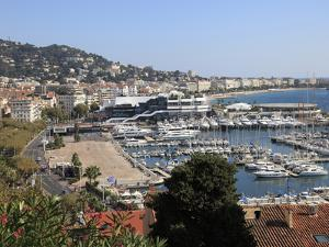 Harbor, Cannes, Alpes Maritimes, Cote D'Azur, French Riviera, Provence, France, Europe by Wendy Connett