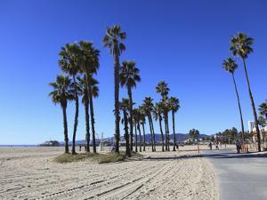 Santa Monica, Los Angeles, California, Usa by Wendy Connett