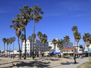 Venice Beach, Los Angeles, California, United States of America, North America by Wendy Connett