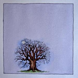 A Bare Tree in the Moonlight by Wendy Edelson