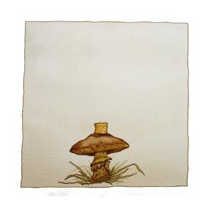 A Mushroom with Grass Growing Around It by Wendy Edelson