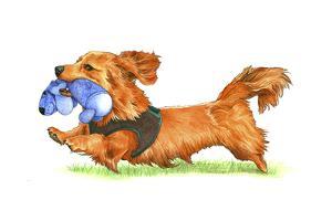 Dachsund Dog by Wendy Edelson