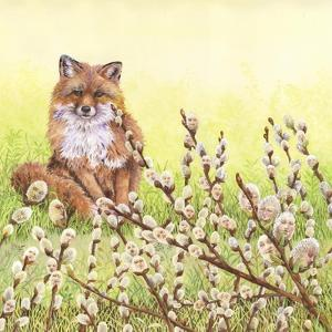 Pussywillows Fox by Wendy Edelson