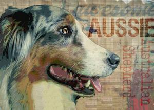 Aussie by Wendy Presseisen
