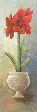 2-Up Amaryllis Vertical by Wendy Russell