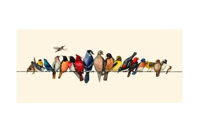 Bird Menagerie III