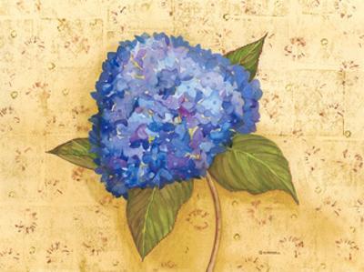 Hydrangea Love II by Wendy Russell