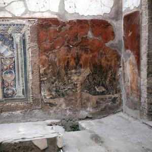 House of the Mosaic of Neptune and Amphitrite, Italy by Werner Forman