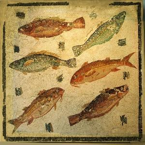 Mosaic pavement depicting fish. Culture: Roman. Period/ Date: 3rd C AD by Werner Forman