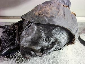 Tollund man, victim of human sacrifice by ritual strangulation by Werner Forman