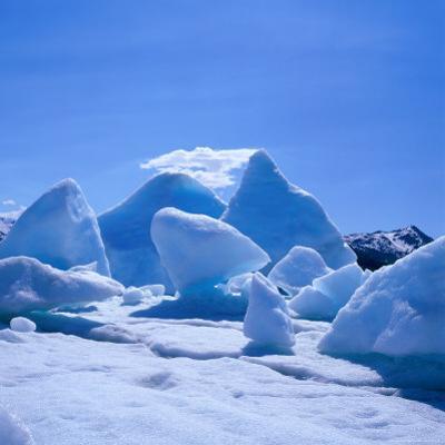 Icebergs in Alsek Lake, Glacier Bay National Park & Preserve, Alaska, USA