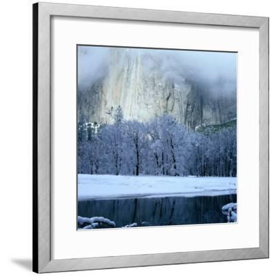 Mercad River and Snow-Covered Black Oak Trees in Front of El Capitan, Yosemite National Park