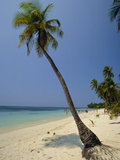 West Bay, Roatan, Largest of the Bay Islands, Honduras, Caribbean, Central America-Robert Francis-Photographic Print