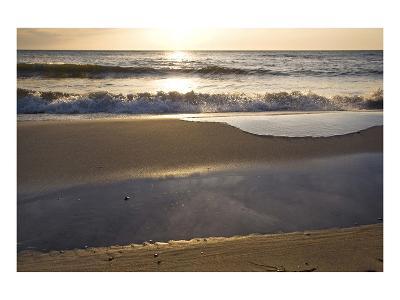 West Beach near Prerow, Fischland-Darss-Zingst, Mecklenburg-Western Pomerania, Germany--Art Print