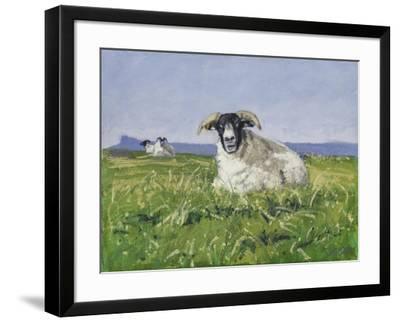 West Coast Sheep, 2017-Charles Simpson-Framed Giclee Print