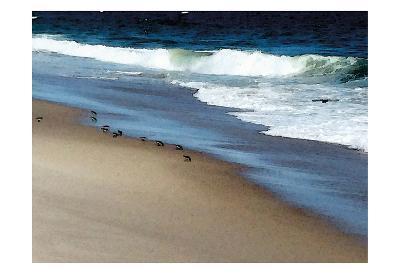 West Coast Shore-Jeff Pica-Art Print