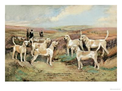 West Country Harriers-Thomas Ivester Llyod-Art Print