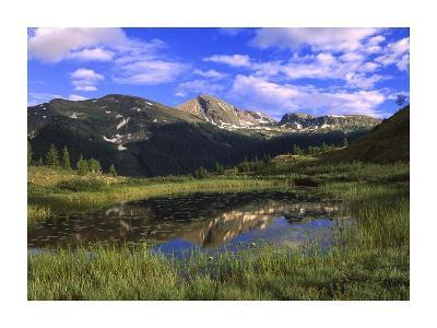 West Needle Mountains, Weminuche Wilderness, Colorado-Tim Fitzharris-Art Print