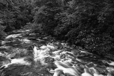 West Prong River-Bob Rouse-Photographic Print