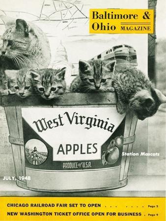 https://imgc.artprintimages.com/img/print/west-virginia-apples_u-l-ptnnio0.jpg?p=0