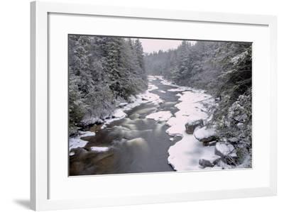West Virginia, Blackwater Falls SP. Stream in Winter Landscape-Jay O'brien-Framed Photographic Print