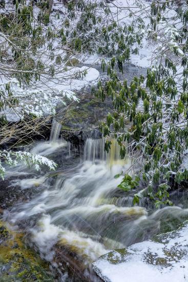 West Virginia, Blackwater Falls State Park. Blackwater River in Winter-Jaynes Gallery-Photographic Print